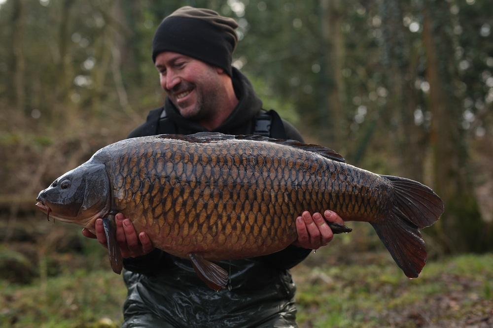 The 32lb 10oz chestnut-brown common.