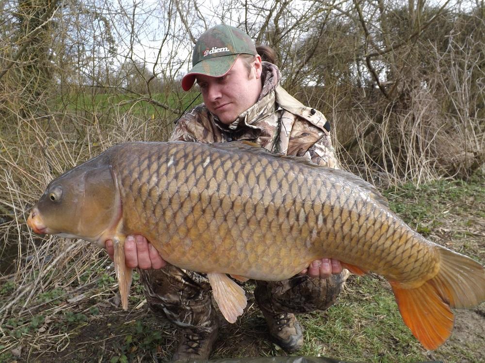A 27lb 6oz Biggin common