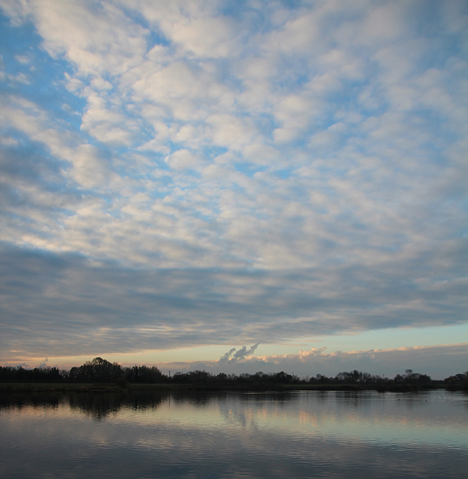 A 'mackerel' sky means change is on the way