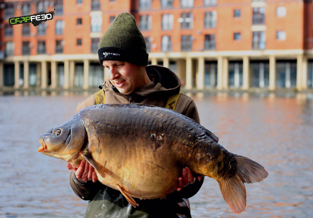 The biggest living carp in Wales