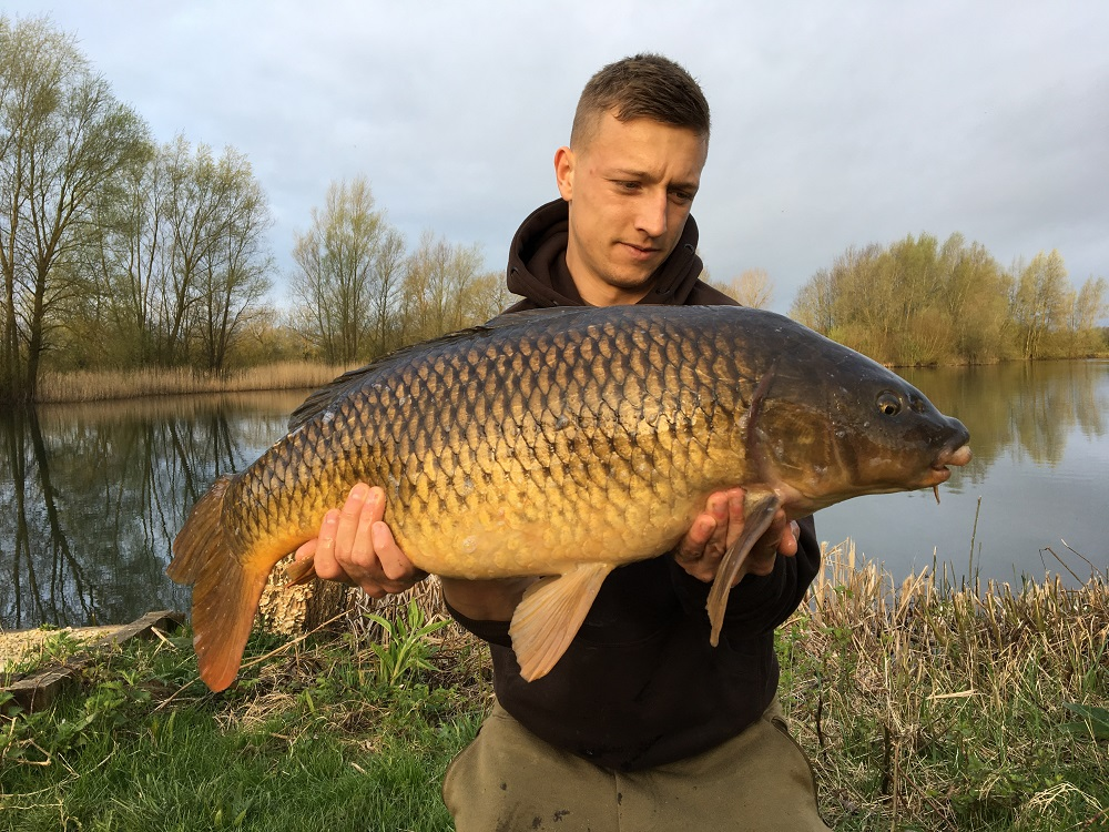 Just time for this common before heading back to the County Ground