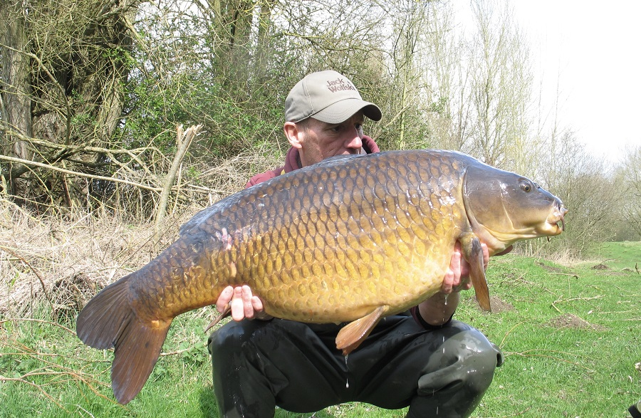 The lake's biggest common
