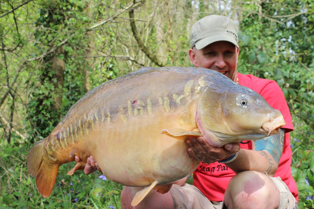 The 49lb Linear
