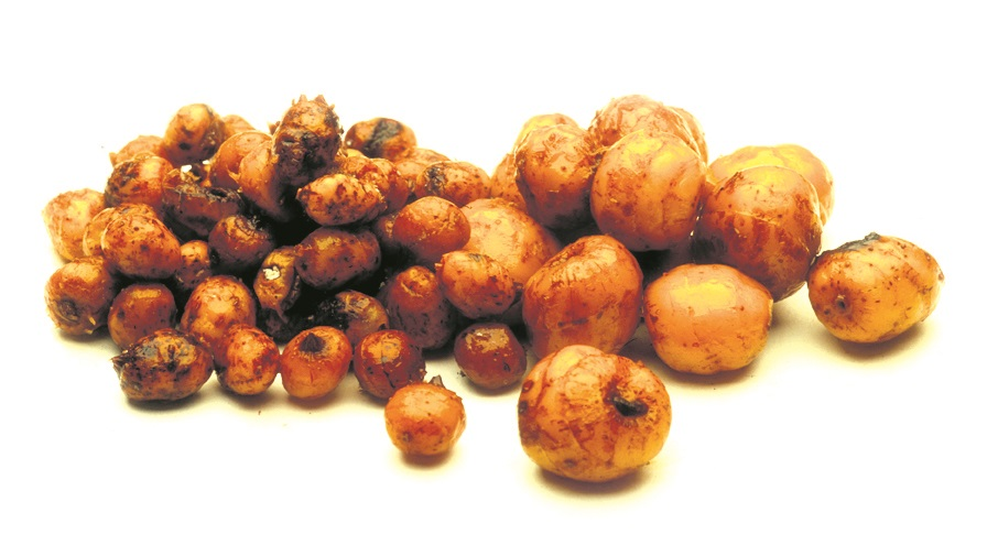 Tiger nuts would be Lewis's boilie-ban replacement