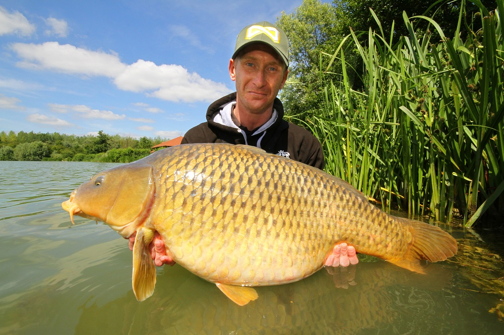 Owner Tony Hibbert with a LDP common.JPG