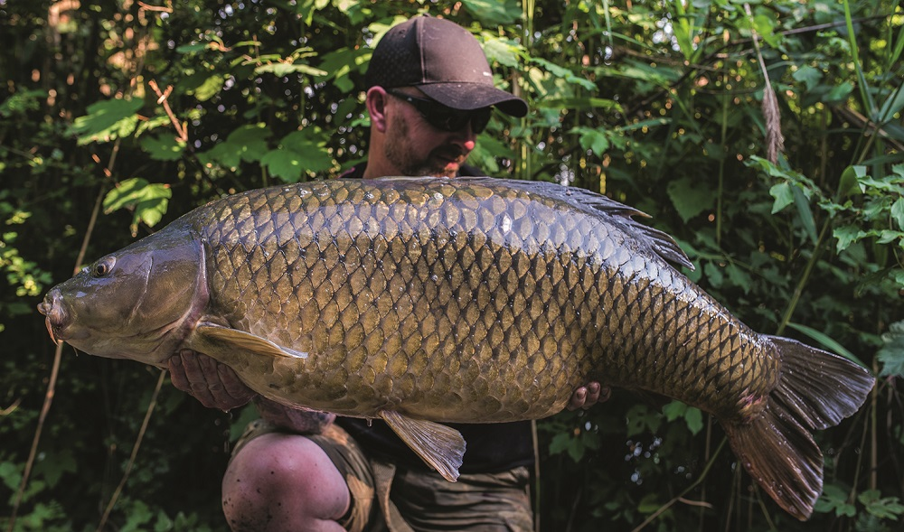 This common went 50lb 12oz