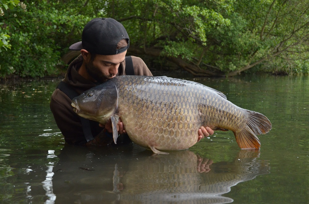 The Slate Grey Common at 44lb 8oz