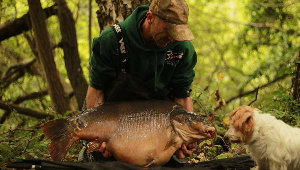 A special pic of a special carp