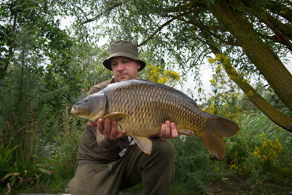A 20lb 8oz common was the smallest of the trio