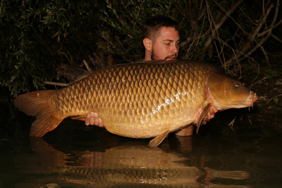 The Cut Tail Common weighed 60lb 8oz