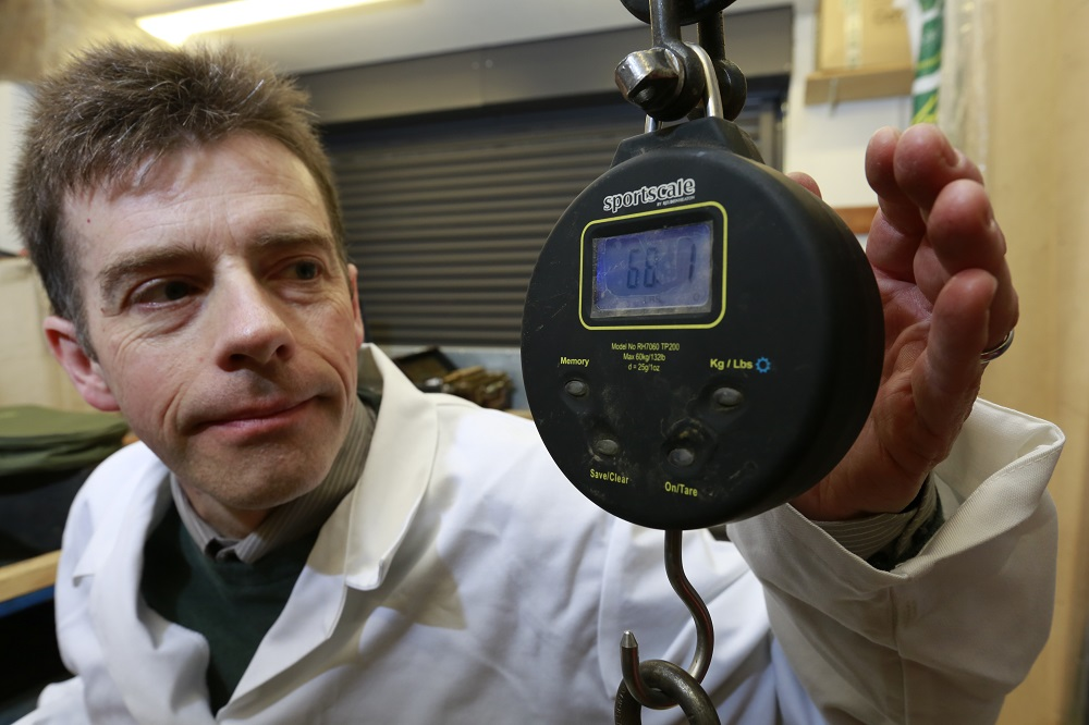 Cambridgeshire Trading Standards testing the scales used to weigh the current record, the Parrot