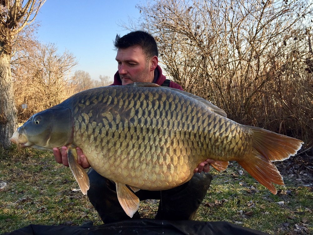 Mission accomplished! 58lb of Italian common