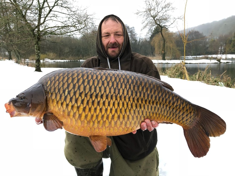 Look at the colour of this 28lb 6oz common!