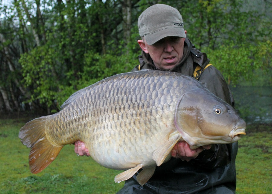 The Chinese Common at 51lb 4oz