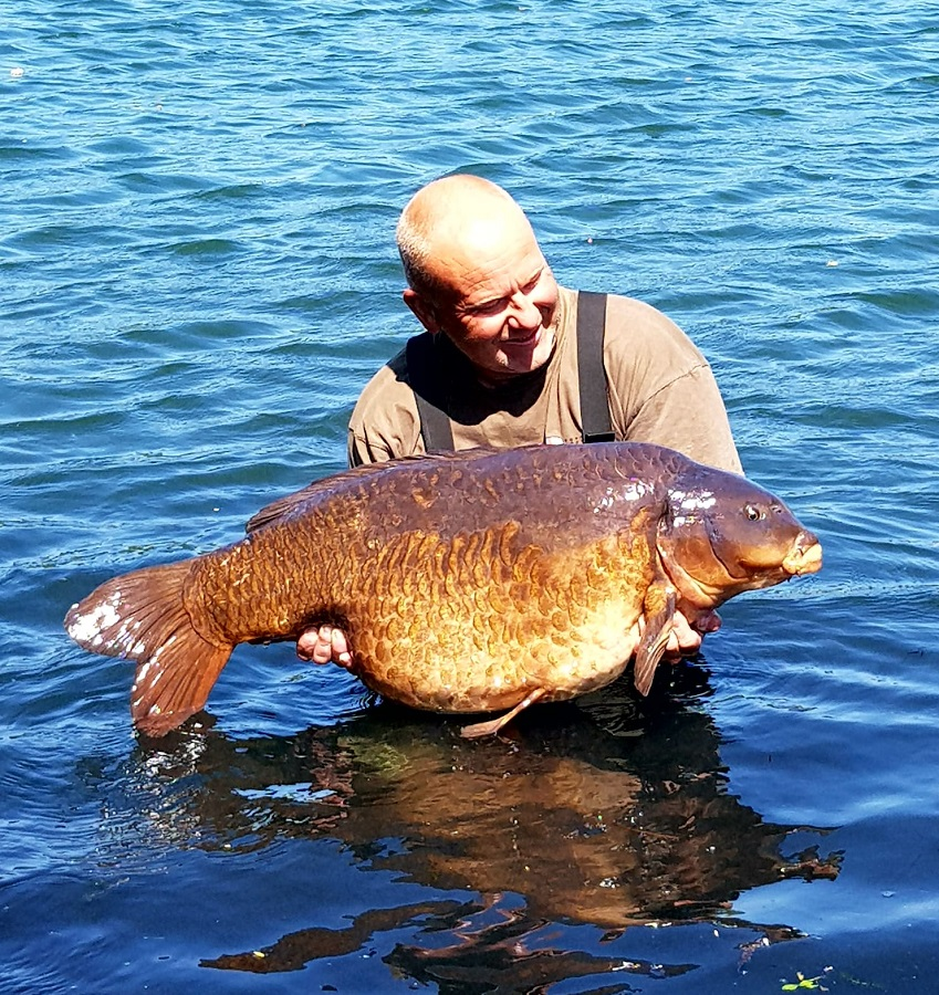 Distinctive and big! 41lb 10oz of unusual carp