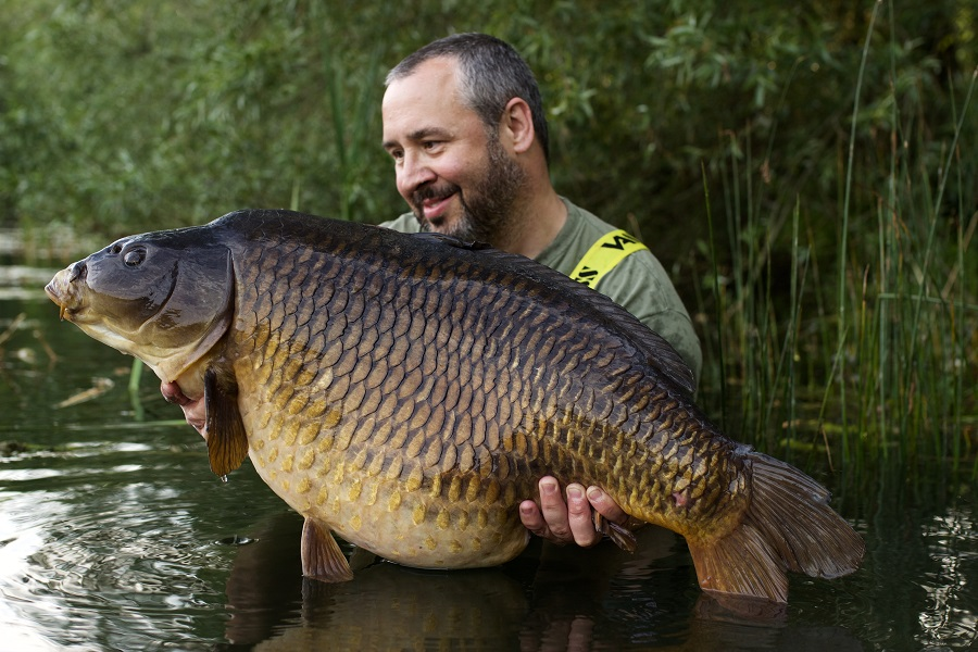 The first 40 from Little Farriers