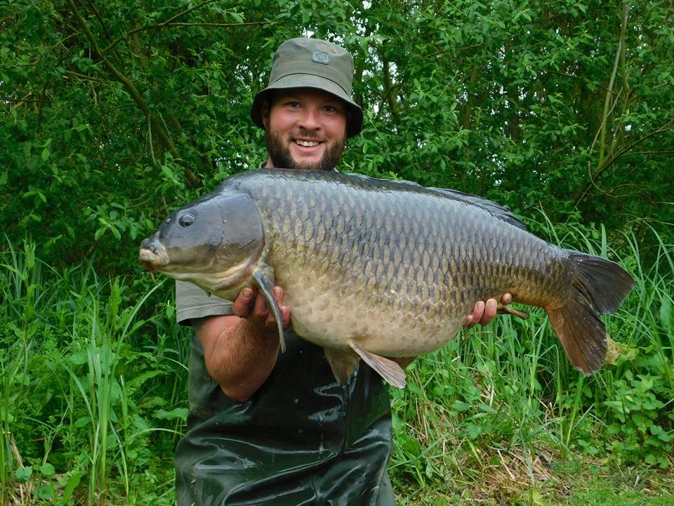 45lb 12oz of Kingfisher common