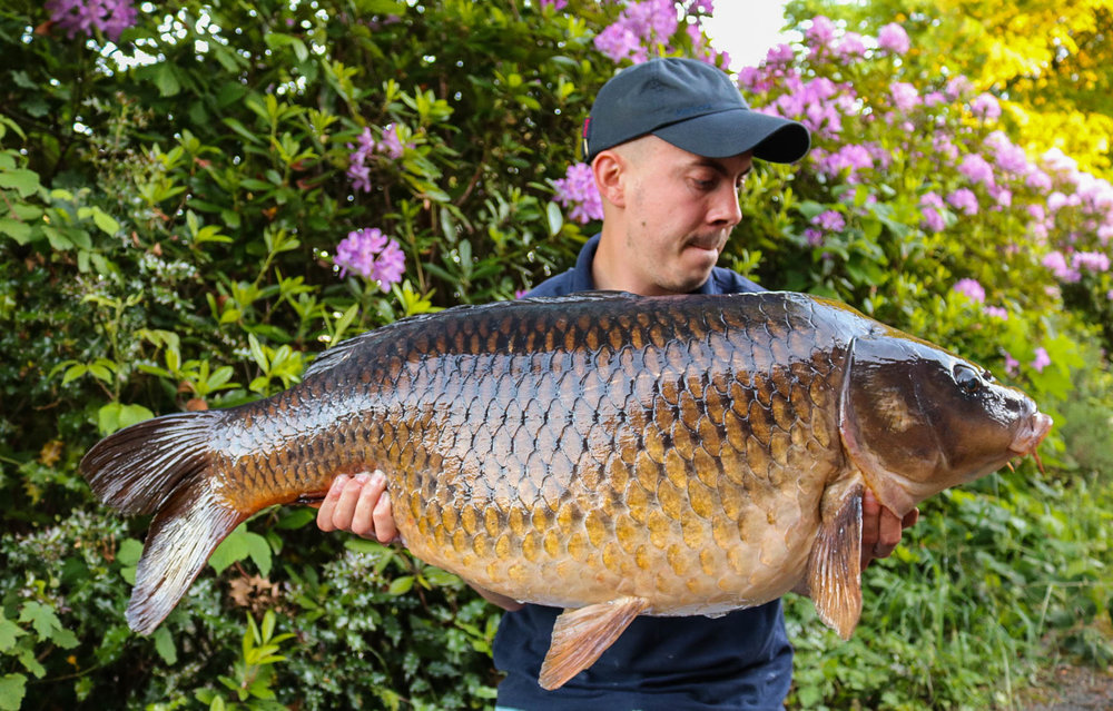 Wow! 36lb 7oz of incredible canal fish