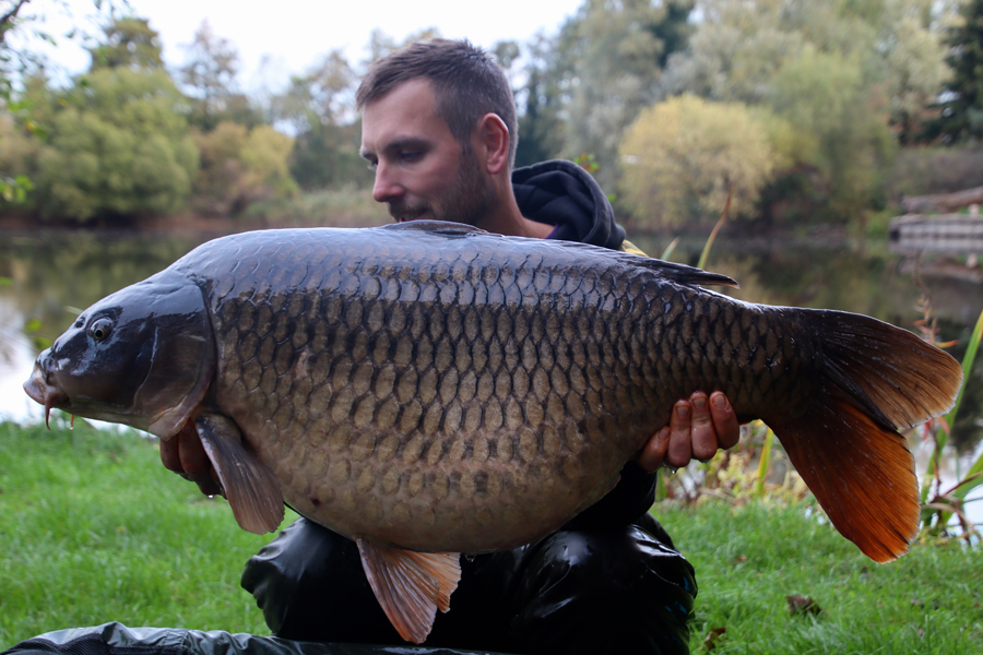 Another look at that 44lb 1oz common