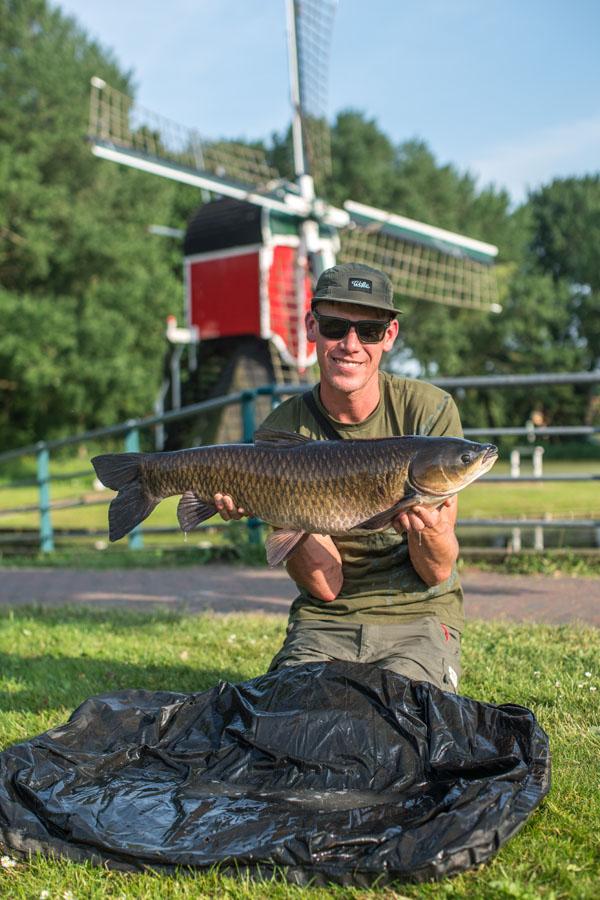 A grass carp reward