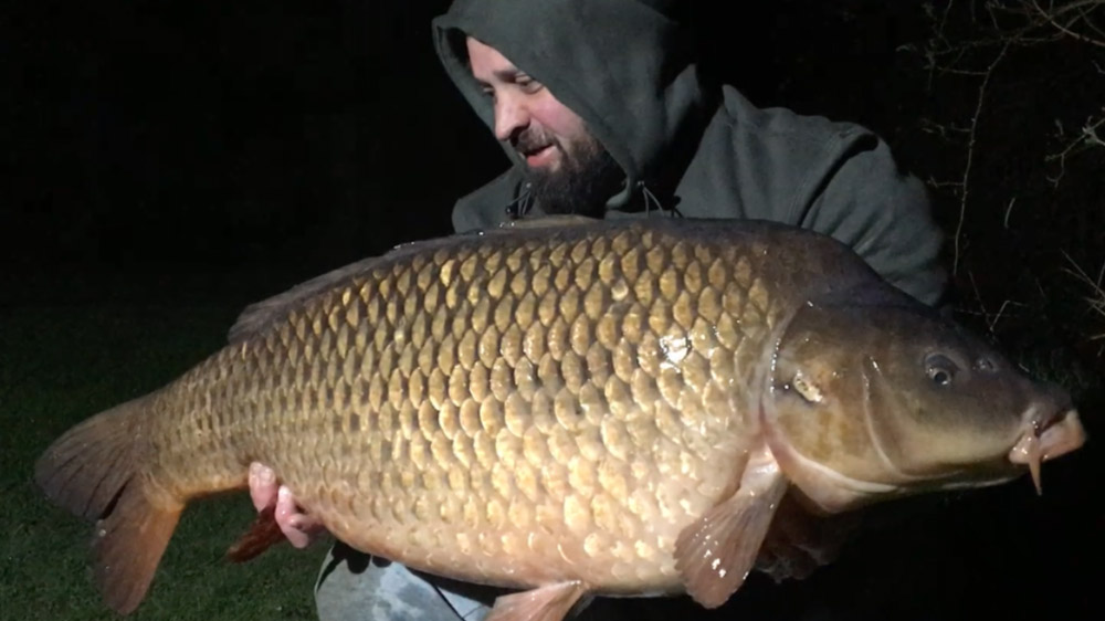 This 40lb 4oz common was the biggest of the trip