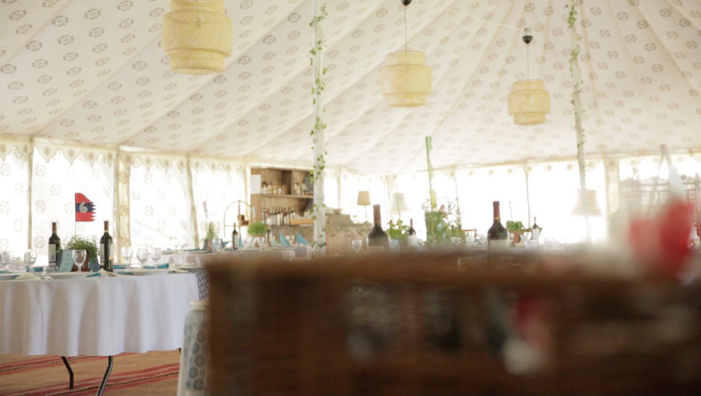 PLANTS AND VINES  We don't feel that much additional decor is needed within the tent but what does look great is a bit of green against the cream backdrop. We have a small but solid array of artificial plants and vines.