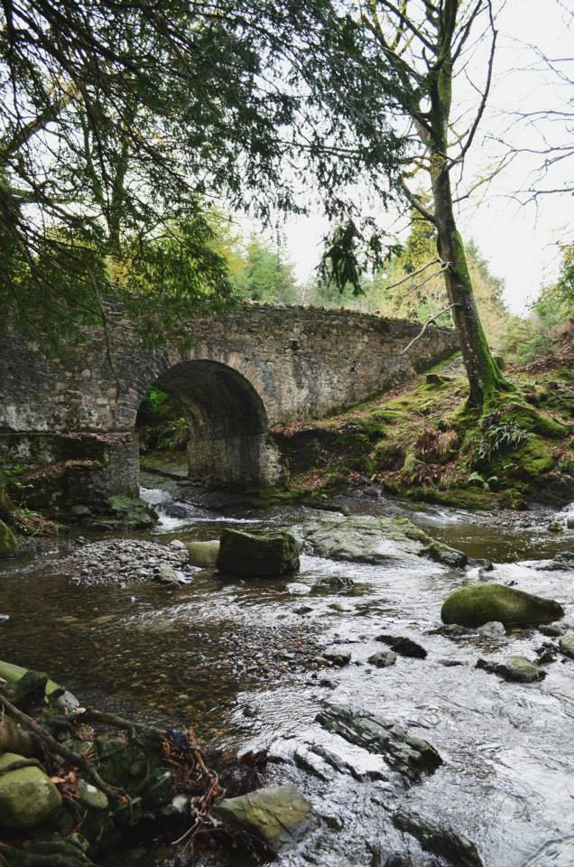 Tollymore Forest bridge.jpg
