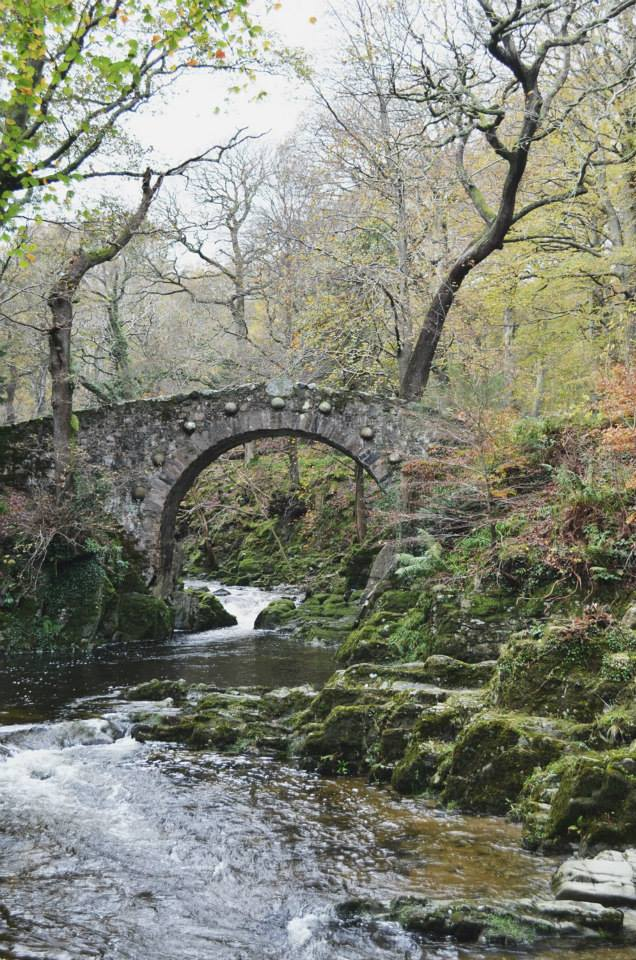 Tollymore Forest stone bridge.jpg