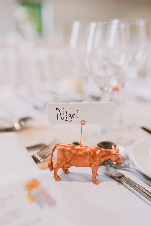 Charming, Rustic Farmer's Wedding at The Dark Hedges, Northern Ireland Wedding Photographer (36).jpg