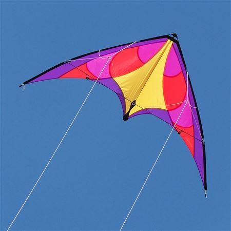 beesker kites.jpg