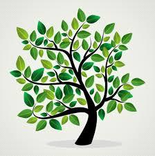 beesker genealogy ancestry.jpg