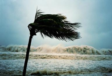 beesker hurricanes.jpg