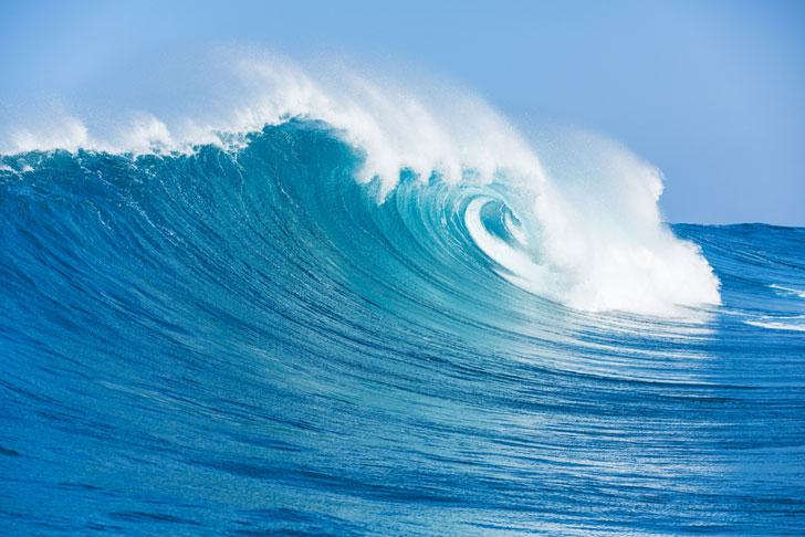 beesker oceans.jpg