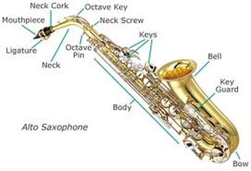 beesker saxophone.png