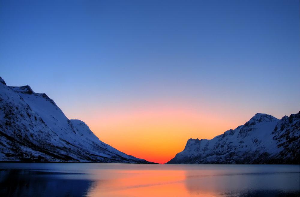 beesker arctic.jpg
