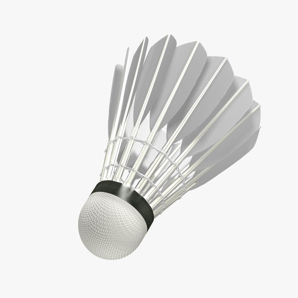 beesker badminton.jpg