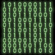 beesker computer software.jpg