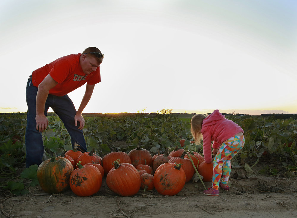 lilyea pumpkin patch father daugther photo