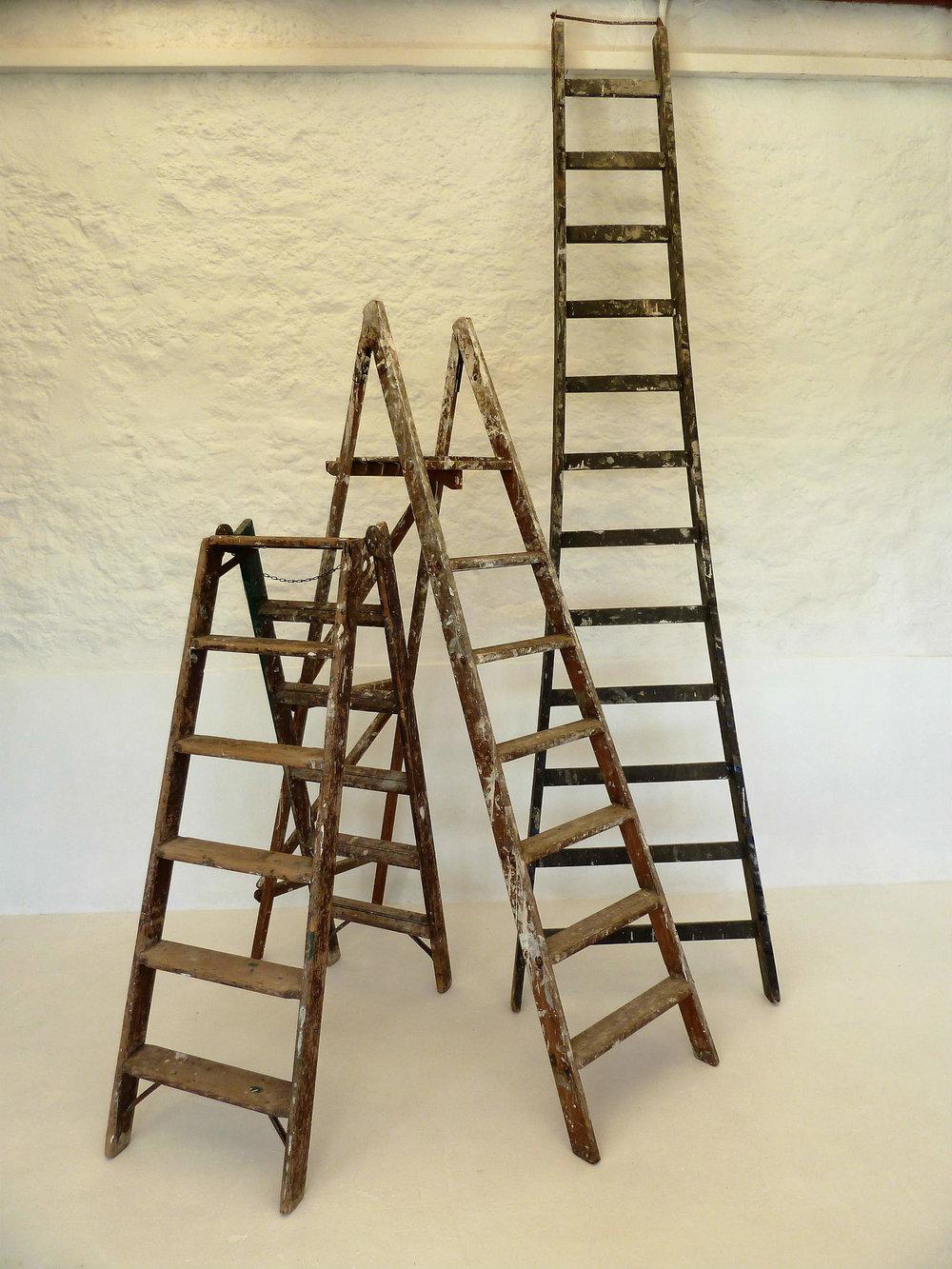 ladders 2.jpg