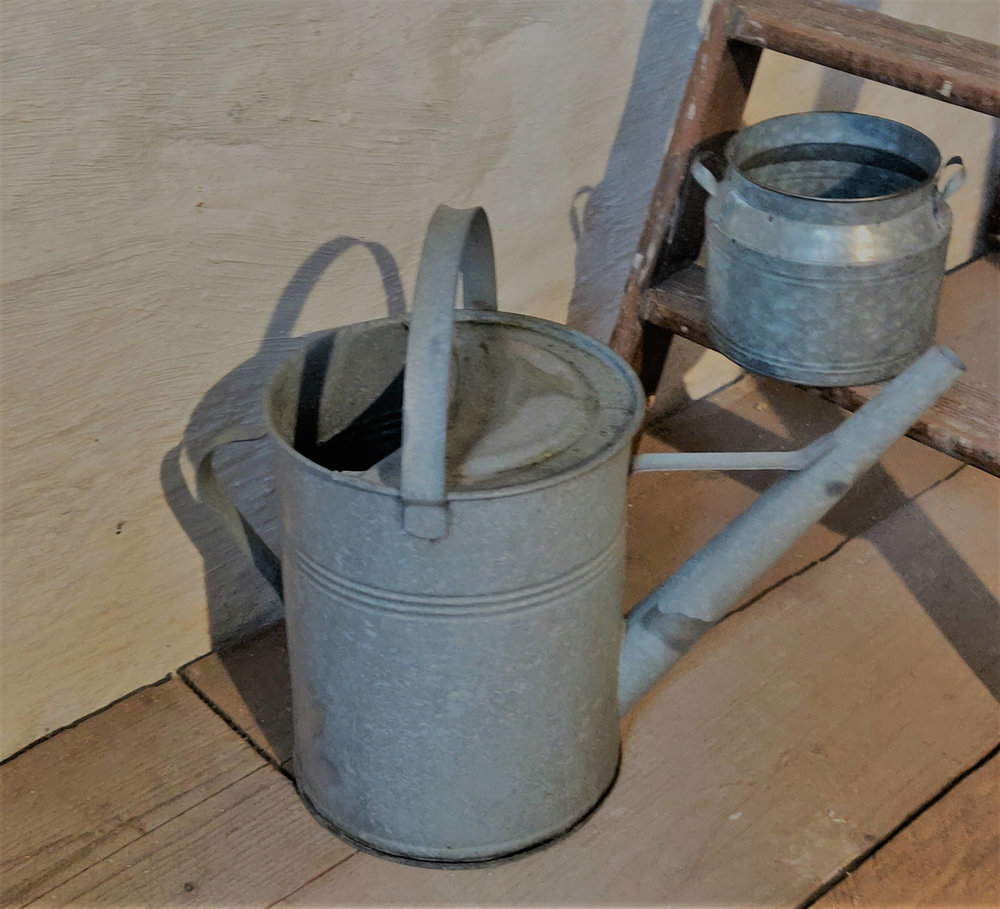 Galvanised watering can  Hire £5
