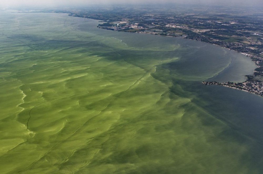 Lake-Erie-algal-bloom-Aerial-Associates-Photography-1024x0-c-default.jpg