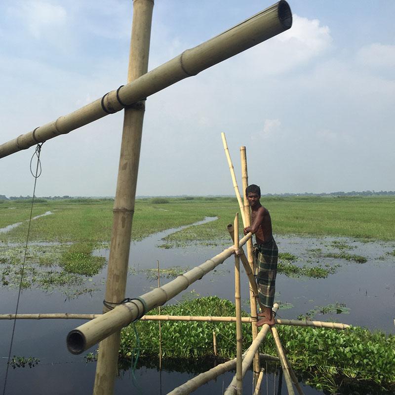 Adaptation-Bangladesh_Image-8.jpg