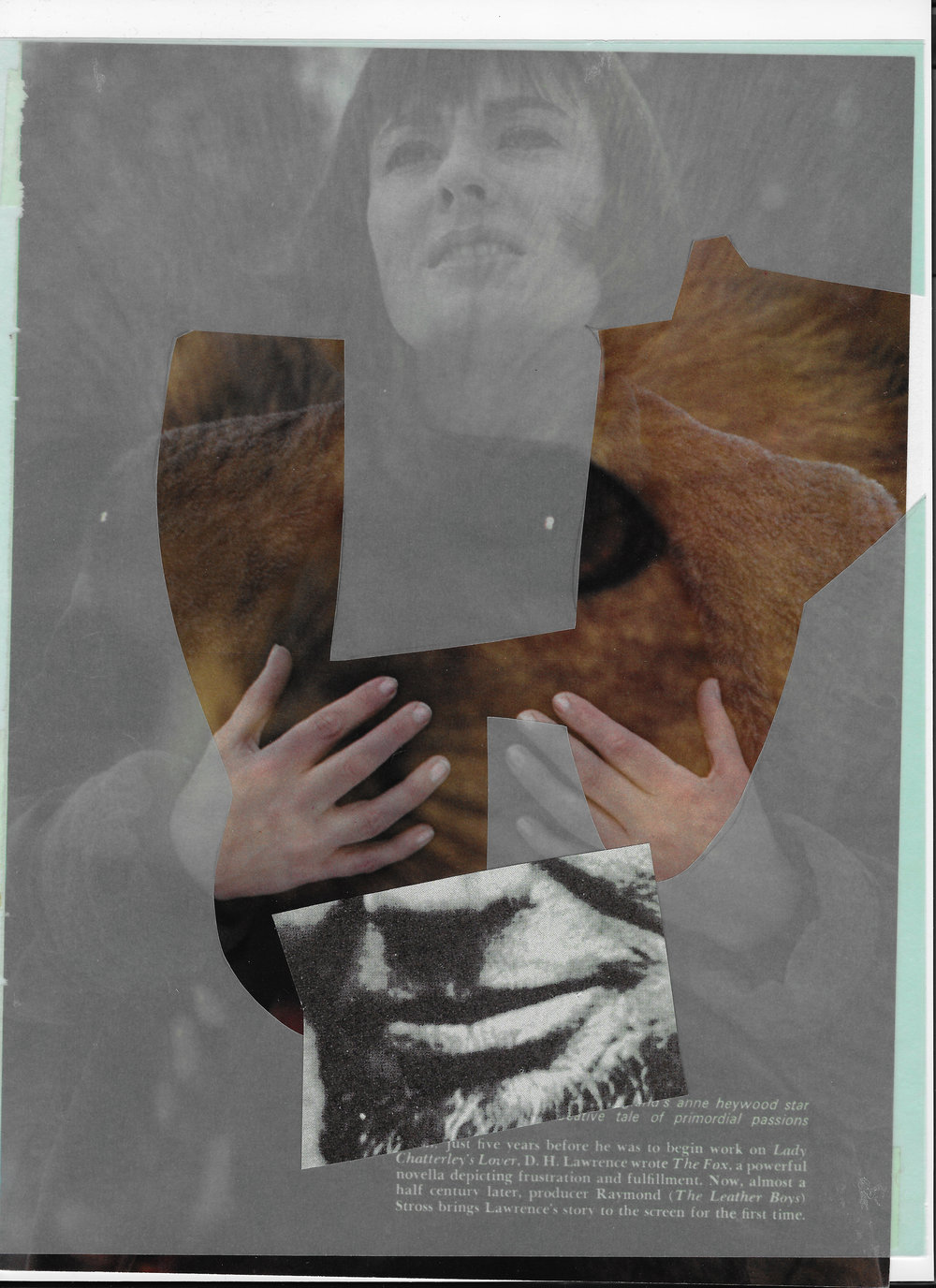 """woman lion history"", collage, found images, vellum, 2015"