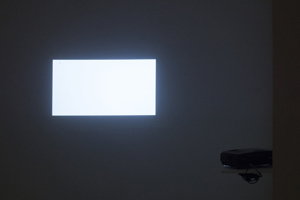Javier M. Rodríguez   Nothing happens in this video,  2018 Blank video projection and fly. Dimensions variable.
