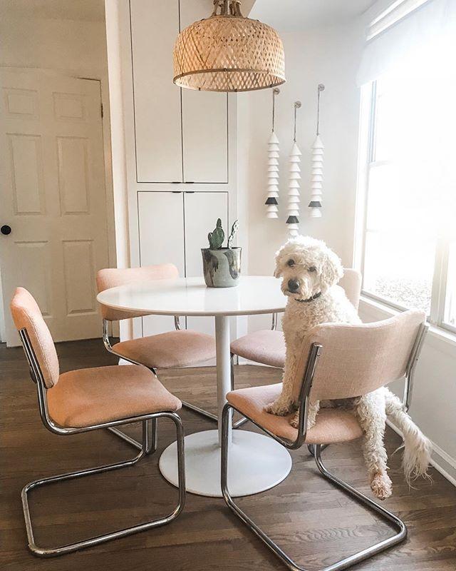 My favorite corner from our #sanantonioreno & my favorite pup #lillianthegoldendoodle 🖤 • • •  http://liketk.it/2zttX #liketkit @liketoknow.it @liketoknow.it.home #LTKhome #LTKunder100 #sanantoniodesign #sodomino #mycb2 #theeverygirlathome #edesign #idcoathome #howihaven
