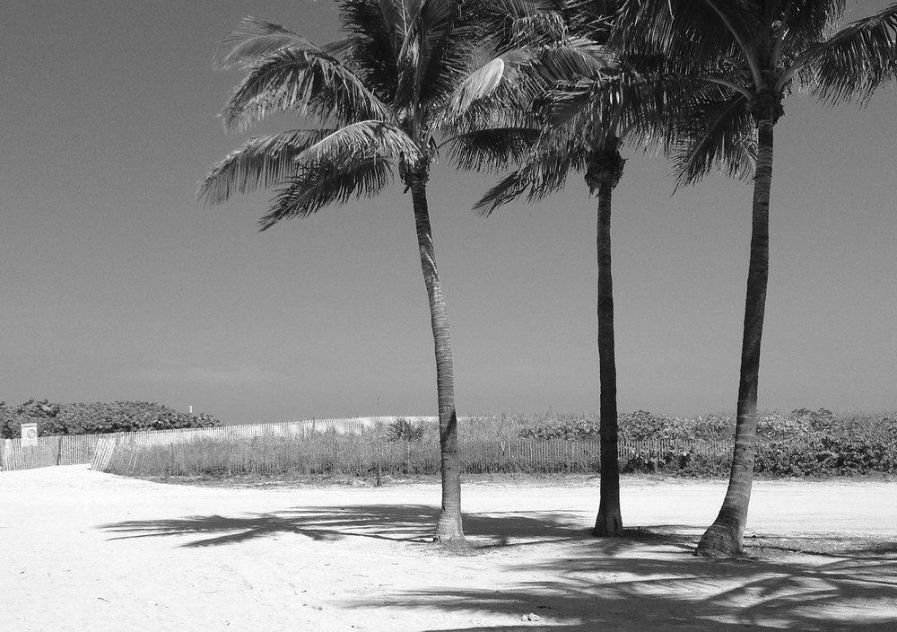 tres_palms.jpg