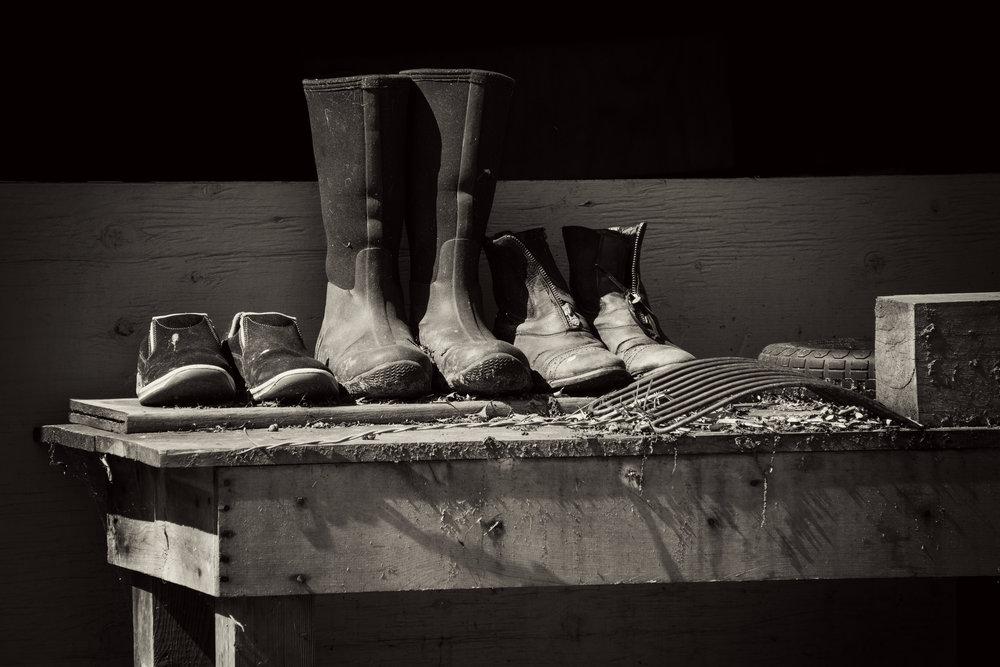 barn_boots.jpg