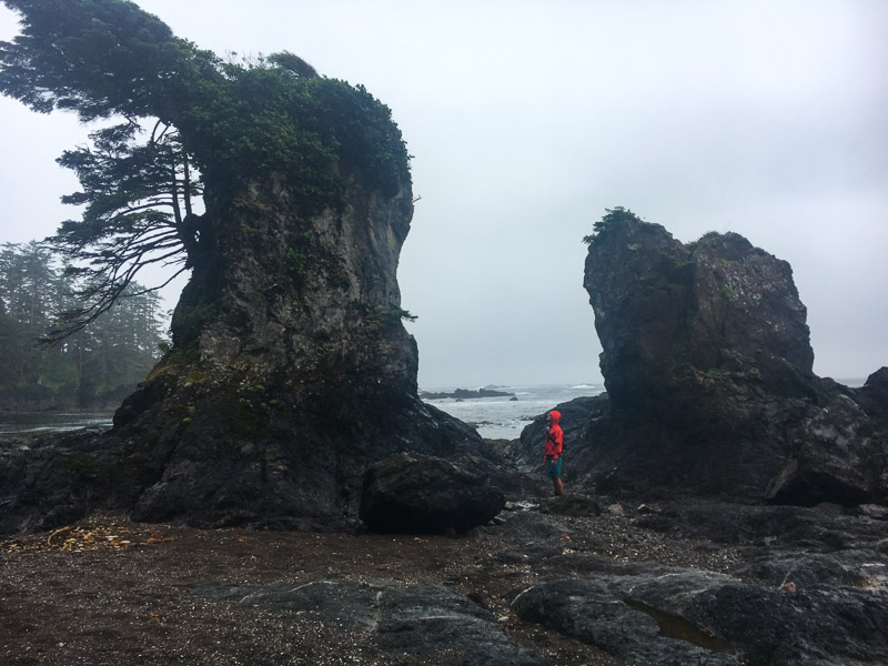 Checking out sea stacks (photo by Allison Mitchell)