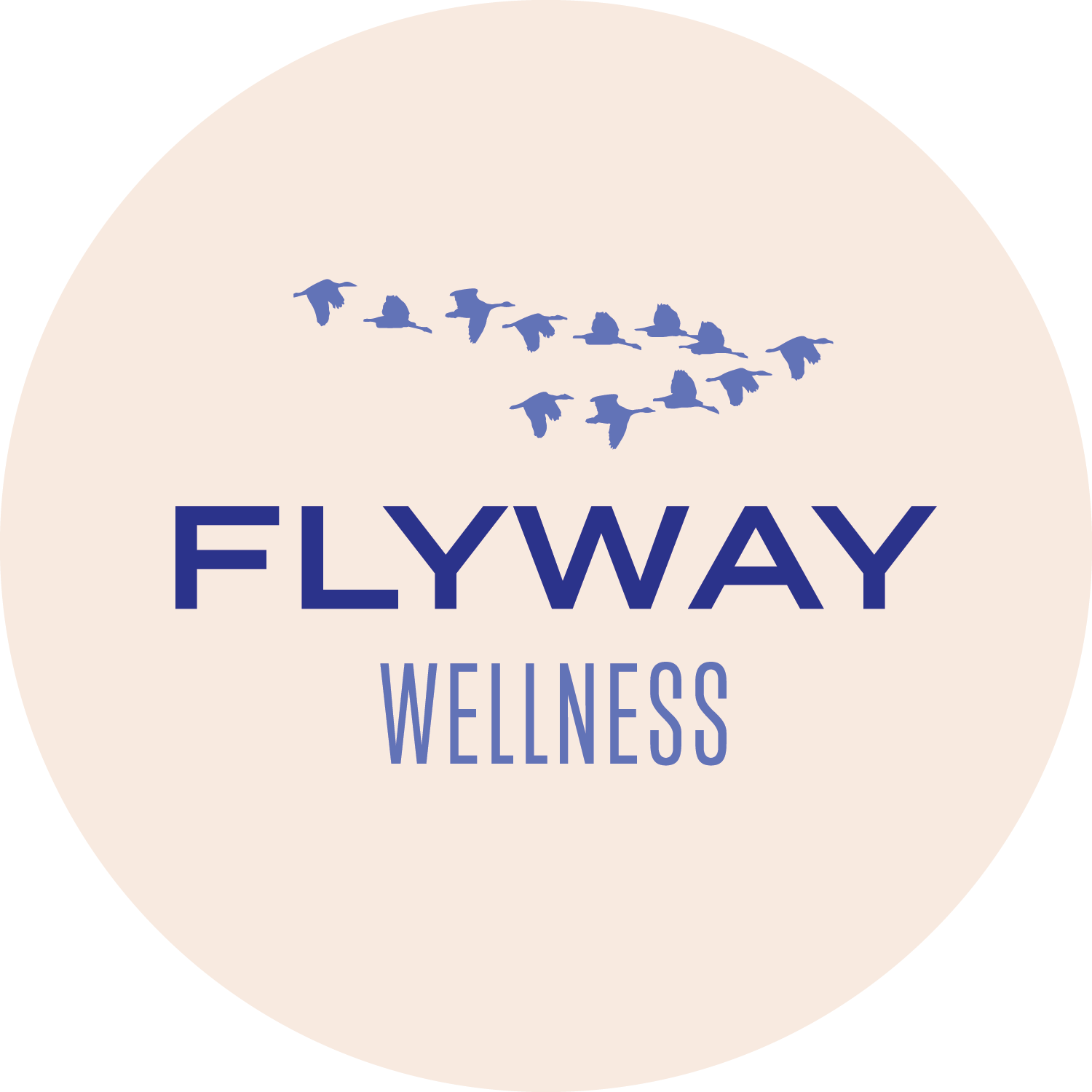 Flyway Yoga