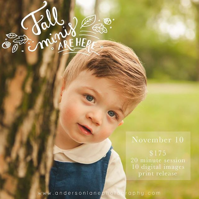 Fall minis are happening! Sorry for the late notice, I wasn't sure if I was going to be doing them this year but decided to squeeze some in! The location is tbd but we'll figure something that works for everyone!  http://www.andersonlanephotography.com/contact